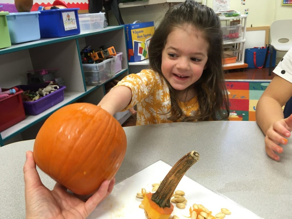 Girl feeling the insides of a pumpkin
